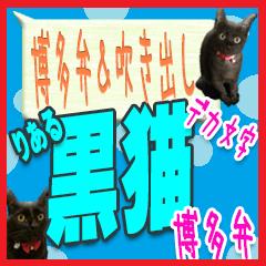 ★博多弁の黒猫の親子★実写版