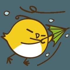 天気と交通手段 (コットリーノ3)