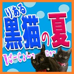 ★りある黒猫★夏仕様(デカ文字)