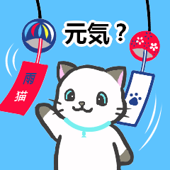 [LINEスタンプ] 雨猫2 ☆夏の生活☆ (1)