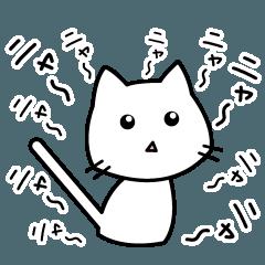 白猫にゃー