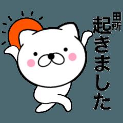 【田所】が使う主婦が作ったデカ文字ネコ