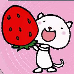 [LINEスタンプ] ねこねこナンバーワン【毎日使うパック】 (1)