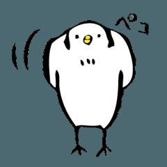 ❗️ とり・トリ・鳥 ❗️
