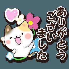 花と三毛猫【敬語編】