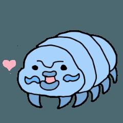 海の変な生き物たち
