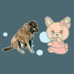 Fat Dog Diary (Happy life of a fat dog)