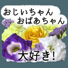 敬老の日に花を♪