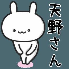 【天野】さんが使うウサギ