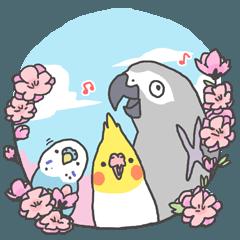 [LINEスタンプ] 三鳥志