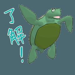 ウミガメは海が好き
