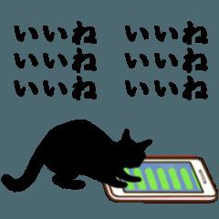 シンプル黒猫☆動く!▷挨拶・ほめる・返事