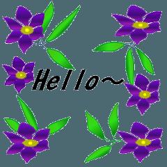 季節のお花でご挨拶