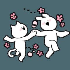 すこぶる動くウサギとネコ【韓国】