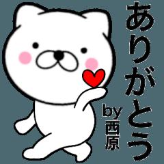 【西原】が使う主婦が作ったデカ文字ネコ