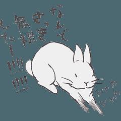[LINEスタンプ] めんどくさい性格のうさぎスタンプ