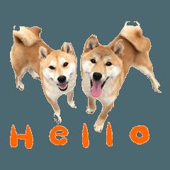 Malu&Hikari part2