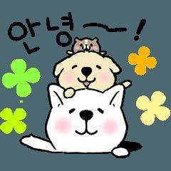 可愛く動く犬ときどきモルモット【韓国語】