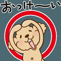 動け!トイプーのぷう太郎1