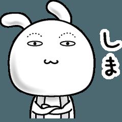【しま】すっぴんうさぎ