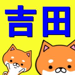 超★吉田(よしだ・よした・きった・きちだ)