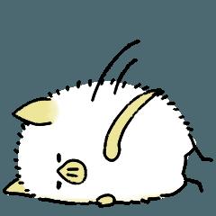 シロヘラコウモリ