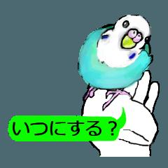 [LINEスタンプ] 鳥鳥鳥