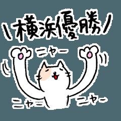 猫と野球と横浜を愛してやまない