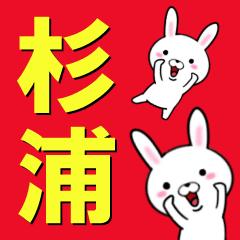超★杉浦(すぎうら・スギウラ)なウサギ