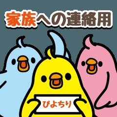 トリ【ぴよちり】家族への連絡用