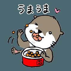 [LINEスタンプ] コツメカワウソの竹千代1