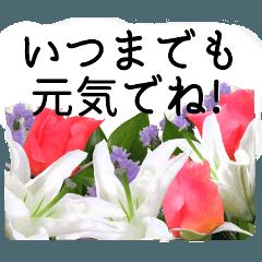 敬老の日に花を♪Part2